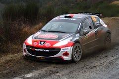 Rallye蒙特卡洛2014年 免版税库存图片