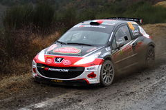 Rallye Μόντε Κάρλο 2014 στοκ εικόνα με δικαίωμα ελεύθερης χρήσης
