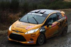 Rallye Μόντε Κάρλο 2014 στοκ εικόνες