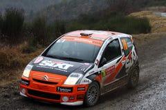 Rallye monte carlo  2014 Stock Photos