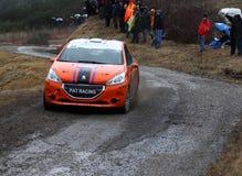 Rallye monte carlo  2014 Royalty Free Stock Photos