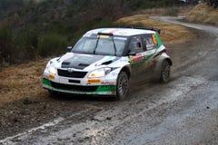 Rallye Monte Carlo 2014 Stockbilder