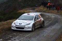 Rallye Monte Carlo 2014 Stockbild