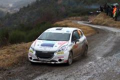 Rallye Monte Carlo 2014 Lizenzfreie Stockfotografie