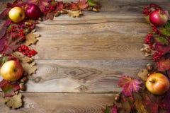Ram av äpplen, ekollonar, bär och nedgångsidor på mörkt trä arkivfoton