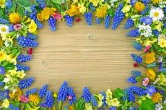 Ram av blommor Arkivbilder