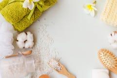 Ram av brunnsortingridients Bada solt, hårkammen, naturlig tvål, test av bast och handduken med kopieringsutrymme på en vit träba Royaltyfri Bild