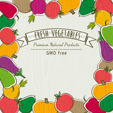 Ram av den organiska grönsaken, vektor Royaltyfri Bild