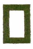 Ram av gräs Royaltyfri Fotografi