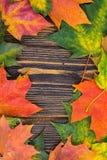 Ram av gröna och röda höstliga kulöra lönnlöv för guling, på träbakgrund kombination av skapad olik bild tre för hdr för exponeri Arkivbild