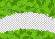 Ram av gröna sidor för design och garnering stock illustrationer