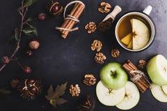 Ram av höstsidor, kastanjer och ingredienser för varmt kryddat Arkivbilder