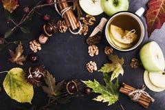 Ram av höstsidor, kastanjer och ingredienser för varmt kryddat Arkivbild