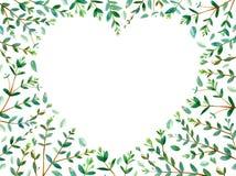 Ram av hjärta med eukalyptusfilialer Fotografering för Bildbyråer