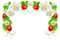 Ram av jordgubbar Royaltyfri Bild