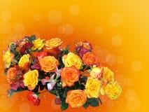 Ram av mång--färgade rosor royaltyfri fotografi