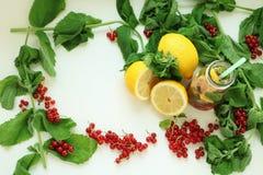 Ram av mintkaramellen, citronen och röda bär arkivbild