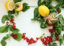 Ram av mintkaramellen, citronen och röda bär arkivfoto