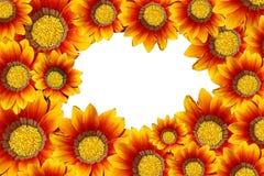 Ram av orange blommor Royaltyfri Bild