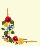 Ram av pansies Royaltyfri Illustrationer