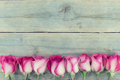Ram av rosa rosor på lantlig träbakgrund för turkos med c Royaltyfri Bild