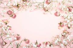 Ram av små delikata vita blommor och rosor på rosa backgrou arkivfoton