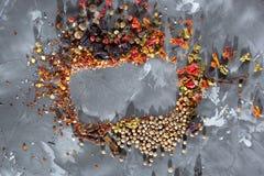 Ram av spridda olika kryddor Royaltyfria Foton