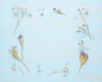 Ram av torra blommor Arkivfoto