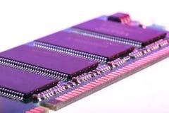 RAM de la memoria del módulo fotografía de archivo libre de regalías