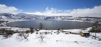 Ram del lago Fotografía de archivo