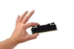 RAM a disposizione immagini stock libere da diritti