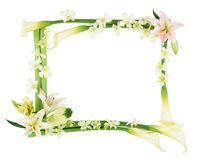 ram för 3 blomma Arkivbild