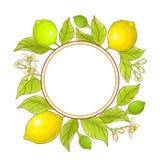 Ram för citronfilialvektor Royaltyfria Foton