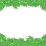Ram för grönt gräs Royaltyfria Bilder