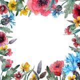 Ram för lösa blommor för vattenfärg royaltyfri illustrationer