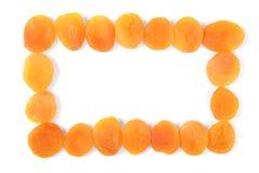 Ram för torkade aprikors royaltyfri bild