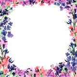 Ram för utdragen vattenfärg för hand fyrkantig med rosa för äng små, blåa och violetta blommor på vit bakgrund Design för kort royaltyfri illustrationer