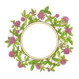 Ram för växt av släktet Trifoliumfilialvektor Royaltyfri Bild