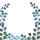 Ram för vattenfärggräsplaneukalyptus royaltyfri illustrationer