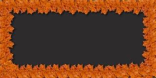 Ram från gulingsidorna på svarten Royaltyfria Foton