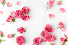 Ram från rosor på vit bakgrund Lekmanna- lägenhet Top beskådar arkivfoto