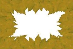 Ram från sidor Royaltyfri Bild