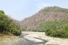 Ram Ganga river in the forest of Jim Corbett Stock Photography