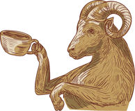 Ram Goat Drinking Coffee Drawing stock illustratie
