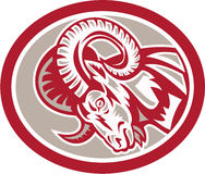 Ram Goat Head Side Circle Retro Royalty Free Stock Images