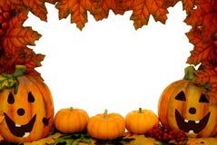 ram halloween Arkivbilder
