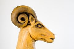 Ram Head Royalty Free Stock Photography