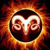 Zodiac Sign of Aries in Fire Circle. Ram head in Flame. Zodiac symbol Aries on fire background. Vector illustration Royalty Free Stock Photo
