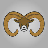 Ram head icon. Animals symbol vector illustration Stock Photography