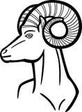 Ram Head Stock Photography